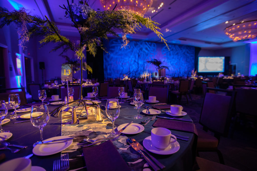 Hilton Harrisburg Ballroom - An Enchanted Evening at the Barre Gala